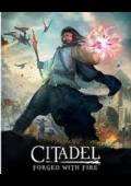 Citadel: Forged with Fire Steam CD Key Global