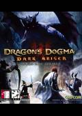 Dragon's Dogma: Dark Arisen STEAM CD key Global